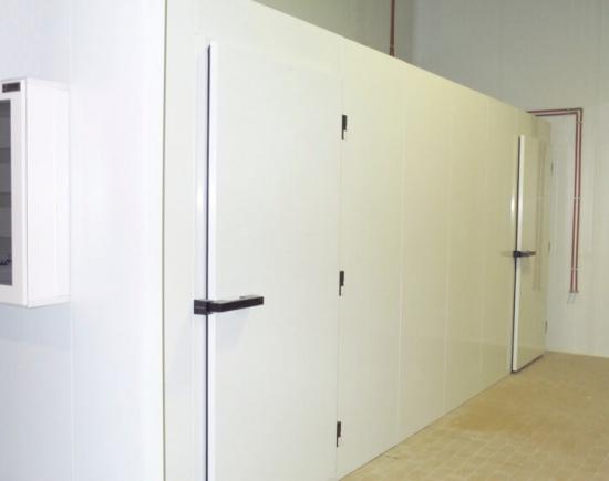 Como organizar cámaras frigoríficas
